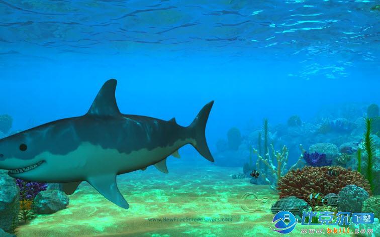 动态屏保免费下载_3D海底世界动态屏保(nfs3DUnderWaterLife4) 官方免费版下载 - 比克尔下载