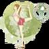在家练瑜伽软件 v1.5.7 安卓版