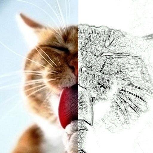 色彩素描画