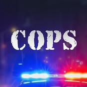 警察追击ios版