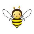 小蜂快游app