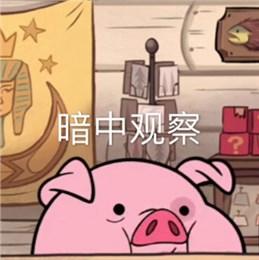 微信搞笑动态表情下载_摇摇猪表情包|怪诞小镇摇摇猪表情包下载 18枚高清无水印 - 比克 ...