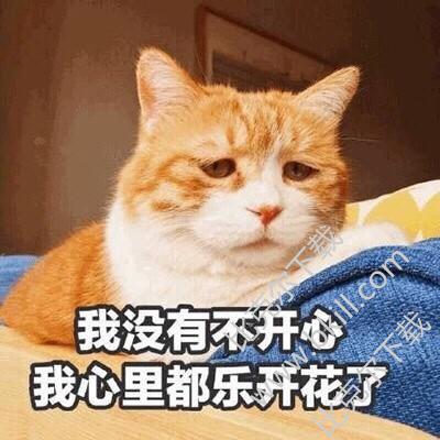 我开心不没有猫下体9枚高清版最新版用表情怼的表情图图片