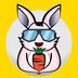 奔奔兔旅行app v1.0.10 安卓版