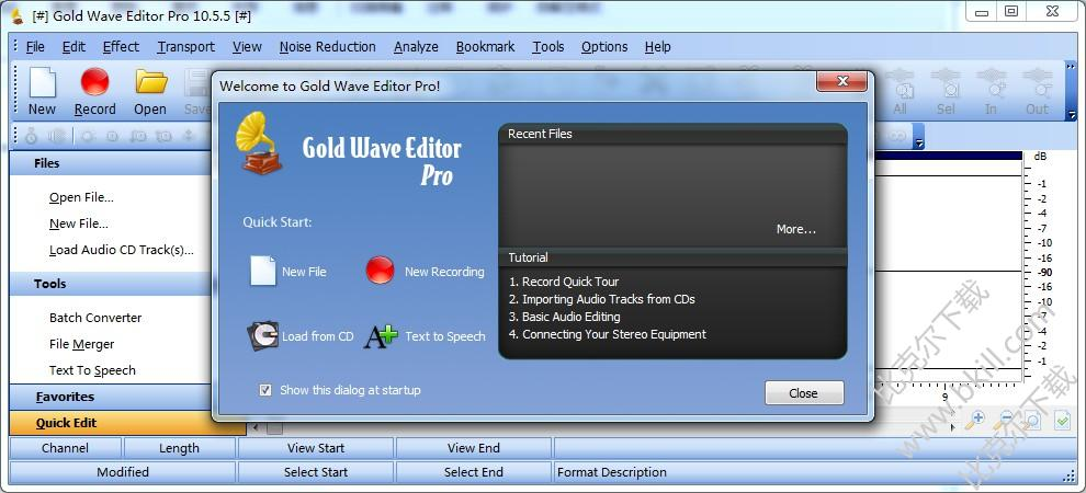 Gold Wave Editor Pro