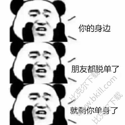 熊猫头2018你依然单身完整表情包