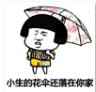 抖音小生的花伞还落在你家表情包 11枚高清版