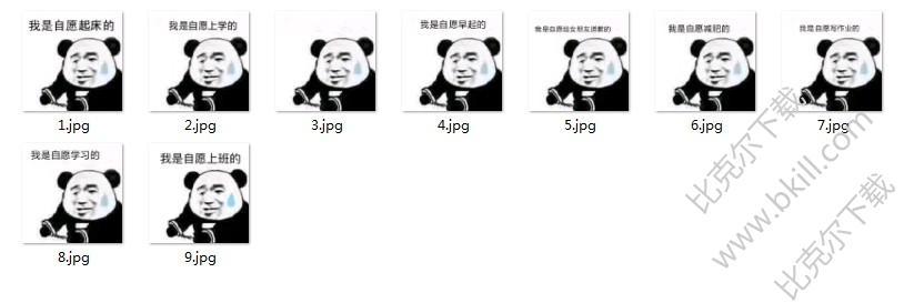 熊猫头我是自愿的表情包