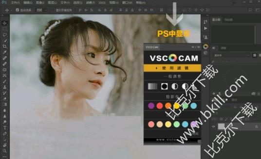 VSCO ps调色插件免费下载|VSCO Photoshop调色插件电脑版下载免费版- 比克