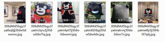 熊本熊怎么说胖就胖表情包