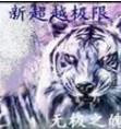 新超越�O限2019春�版 附�[藏英雄密�a攻略